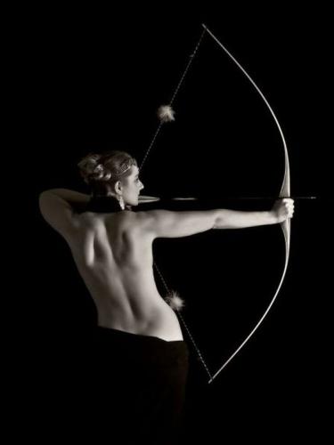 Archer nuit.jpg