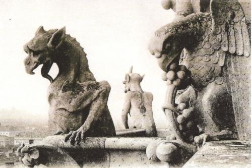 Gargouilles_Notre-Dame.jpeg