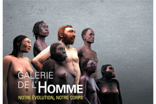 Galerie-de-l'Homme.jpg