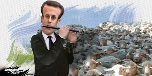 Macron_troupeau.jpg