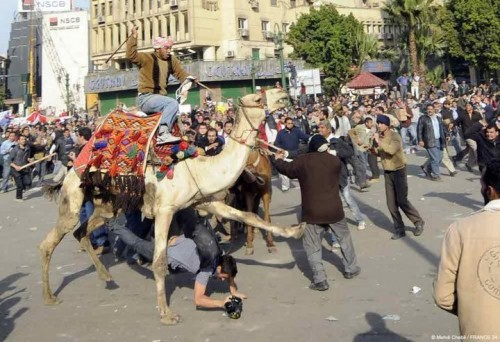 Egypte émeutes.jpg