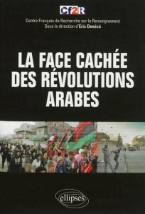 La-face-cachée-des-révolutions-arabes.jpg