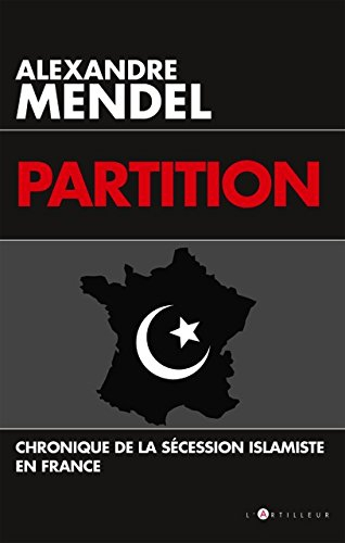 Mendel_Partition.jpg