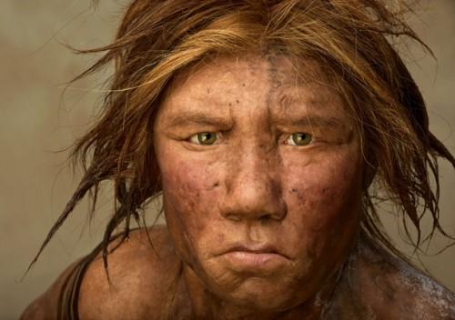 neandertal-wilma.jpg